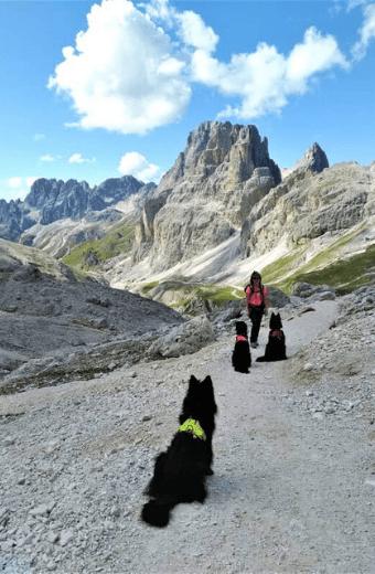 Anna e i suoi cani su di un sentiero in montagna